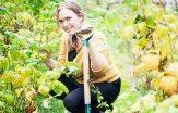 Karoline Jönsson bjuder på fyra härliga höstrecept