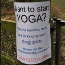 Nedåtgående hund gör viral succé