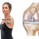 anatomi knä