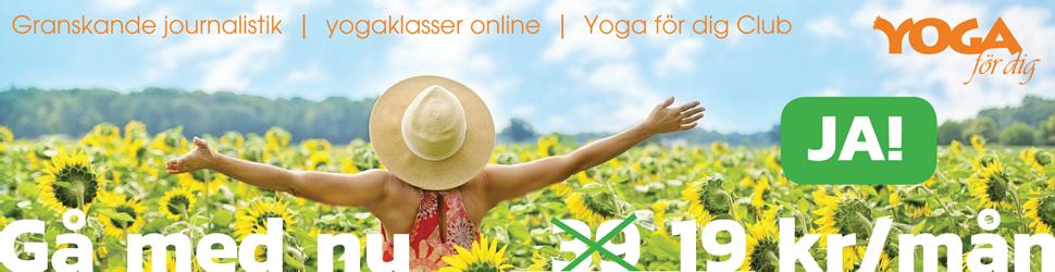 läs om yoga och yoga
